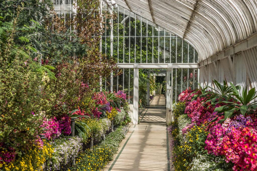 Weekend Belfast Ierland - Botanic Garden