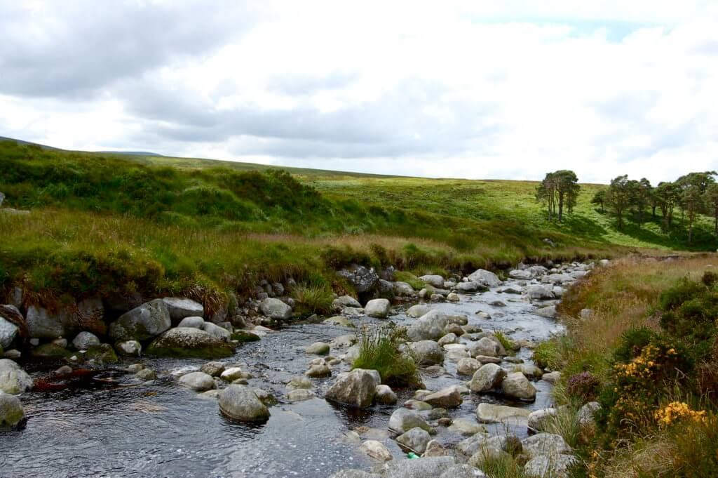 wandelreis wicklow way ierland